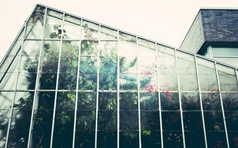 glazen platen tuinkas